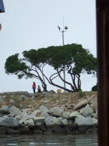 Newport Beach 11 009