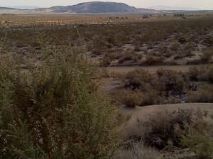 Twentynine Palms Desert in California