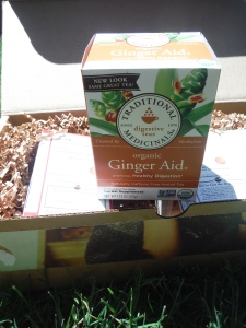 Ginger Aid Traditional Medicinals
