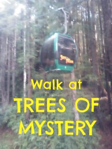 trees-of-mystery-walk