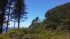 Hiking up to Heceta Head Lighthouse.