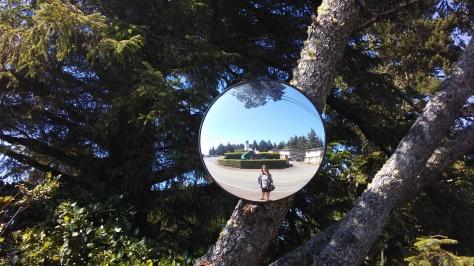 Coast Mirror