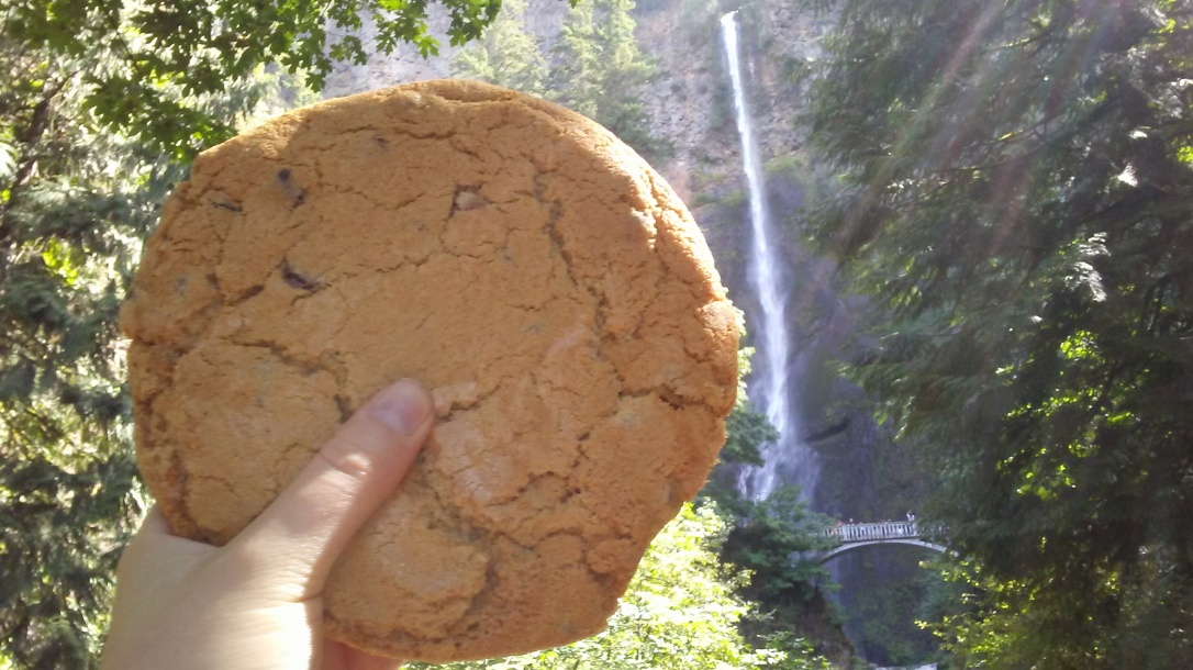 Multnomah Falls Cookie